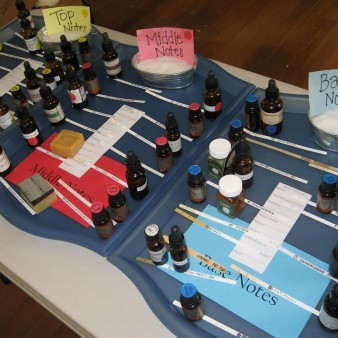 Amber Bottles of Essential Oils on Blue Trays, Seperated into Top, Middle & Base Notes