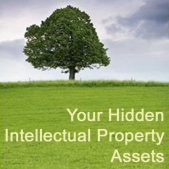 Your Hidden Intellectual Property Assets, Day 3 of the 4-Day Audio Business Boot Camp by Donna Maria Coles Johnson of the Indie Business Network