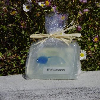 Aquarium Fish Melt & Pour Soap Bar