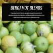 bergamot-essential-oil-blends