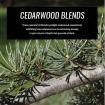 cedarwood-essential-oil-blends