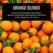 orange-essential-oil-blends